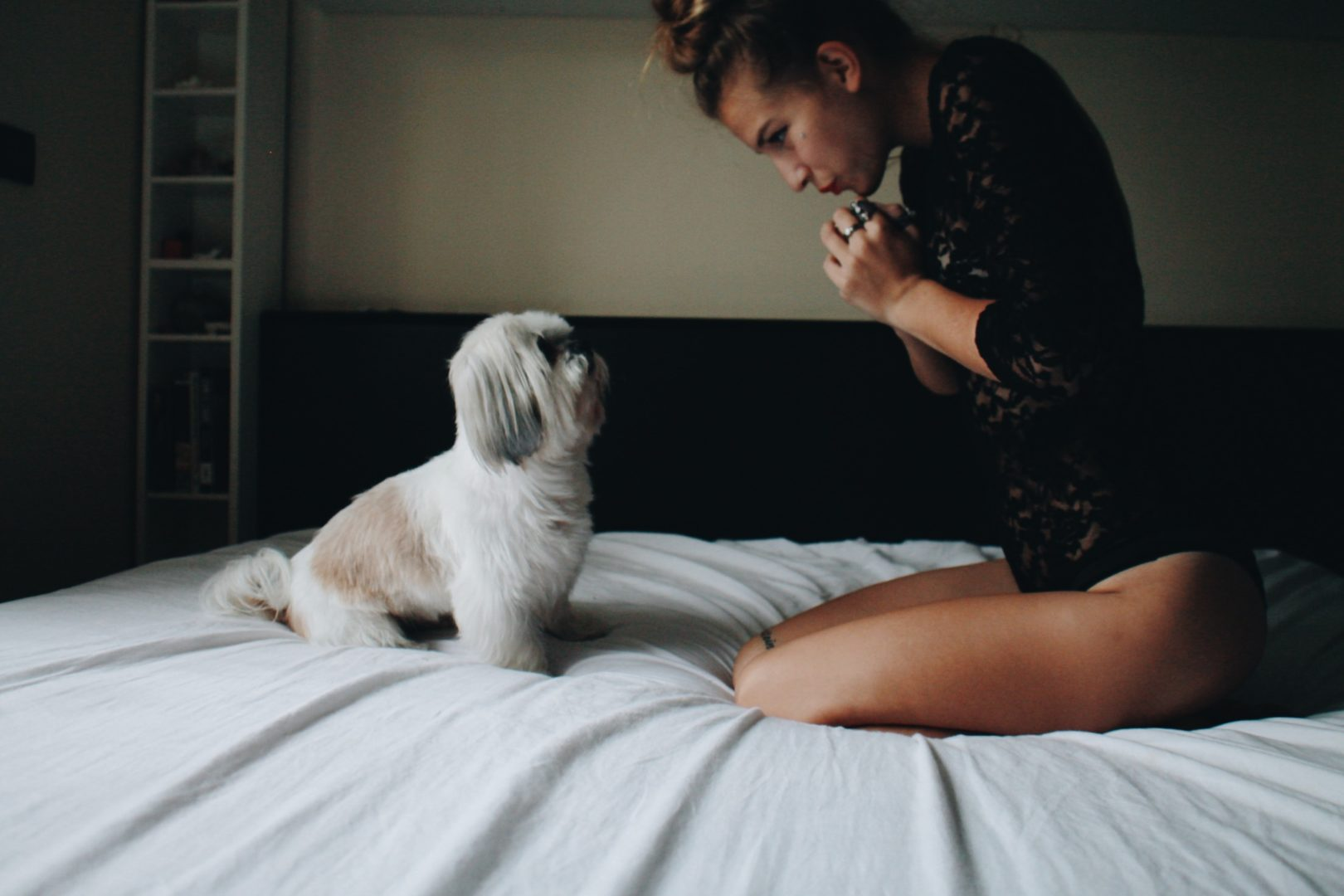 Processed wiPERSONAL STYLE AND SOME PUPPY SHOTSth VSCO with a6 preset