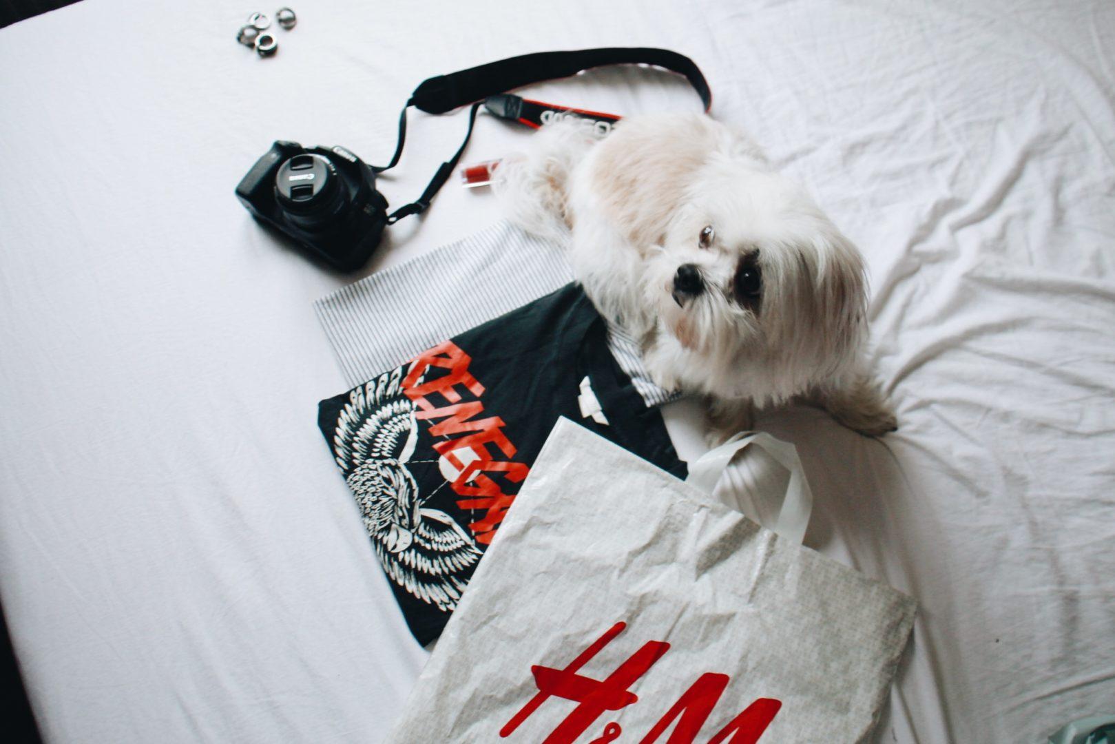 Renegade t-shirt- H&M